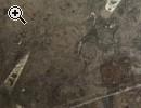 Zimmertisch Tischplatte aus Fossilkalkstein 200.00 - Vorschaubild 3